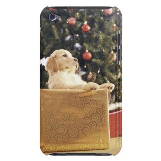 Labrador joven que se inclina en un regalo de Navi Case-Mate iPod Touch Carcasas