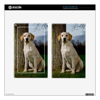 Labrador Kindle Fire Decal For Kindle Fire