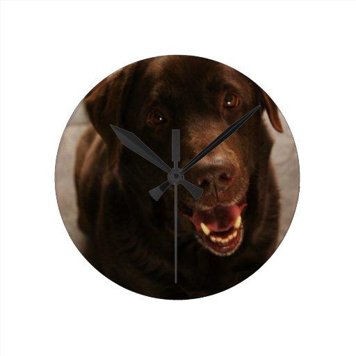 Labrador lindo relojes de pared