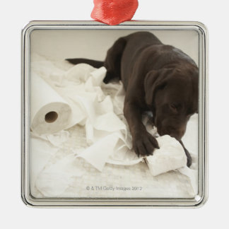 Labrador marrón adorno cuadrado plateado