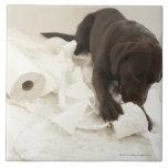 Labrador marrón tejas  ceramicas