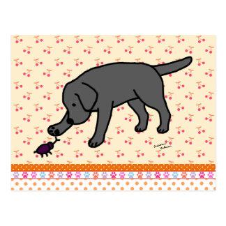 Labrador negro amistoso postal