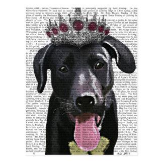 Labrador negro con la tiara postales
