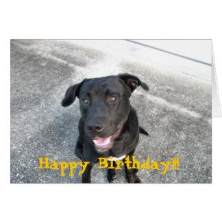 Labrador negro feliz tarjeta