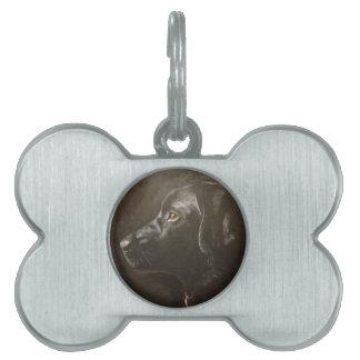 Labrador negro placas de mascota