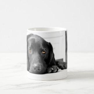 Labrador negro tazas de café