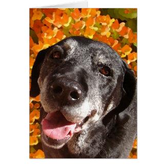 Labrador negro viejo tarjeta de felicitación