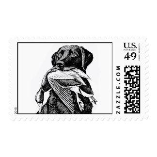 Labrador Postage stamp
