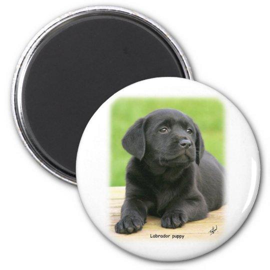 Labrador puppy 9Y267D-109 Magnet