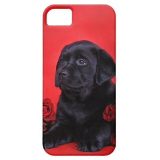 Labrador puppy and roses iPhone SE/5/5s case