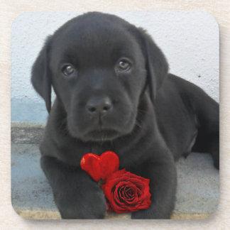 Labrador puppy dog drink coaster