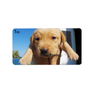 Labrador Puppy - Good Morning! Label