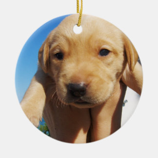 Labrador Puppy - Good Morning! Christmas Ornament