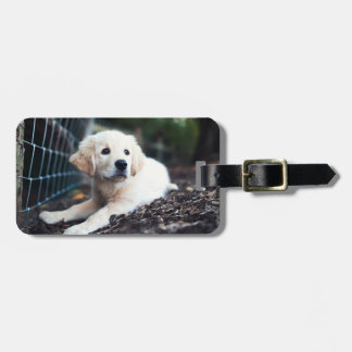Labrador Puppy Playing In The Garden Luggage Tag