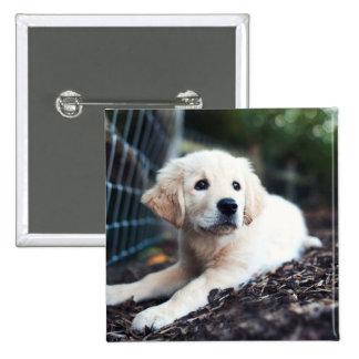 Labrador Puppy Playing In The Garden Pinback Button