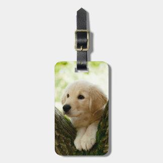 Labrador Puppy Sitting In A Woodland Setting Bag Tag