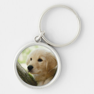 Labrador Puppy Sitting In A Woodland Setting Keychain