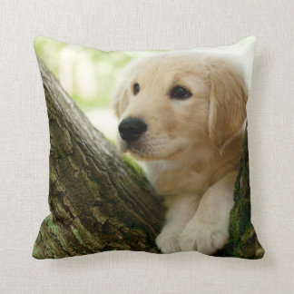 Labrador Puppy Sitting In A Woodland Setting Throw Pillow