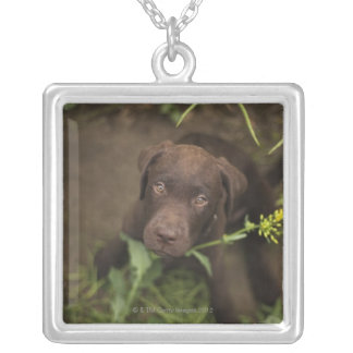 Labrador puppy sitting in grass silver plated necklace