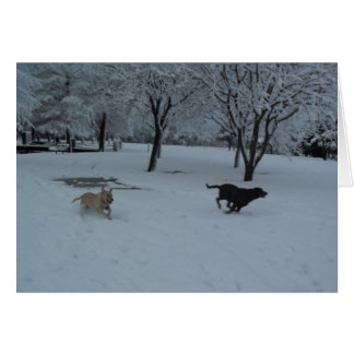 Labrador Retirevers in the snow Card
