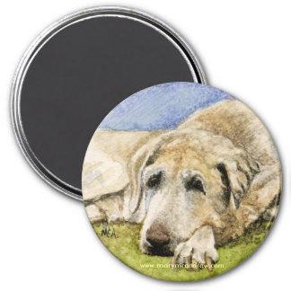 Labrador Retreiver Imán Redondo 7 Cm