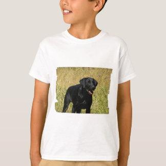 labrador-retriever-25.jpg T-Shirt