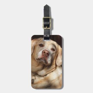 Labrador Retriever 2 Travel Bag Tag