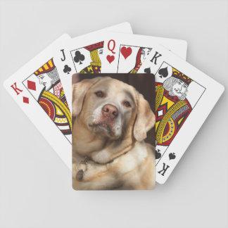 Labrador retriever 2 cartas de juego