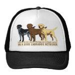 Labrador Retriever 3 colors Hat