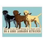 Labrador Retriever 3 colors Post Cards