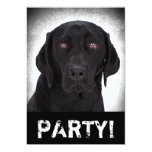 "Labrador Retriever 5"" X 7"" Invitation Card"