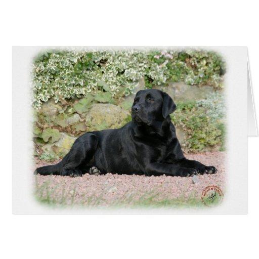 Labrador retriever 9Y262D-047 Felicitacion