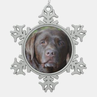 Labrador retriever adorable del chocolate adorno de peltre en forma de copo de nieve