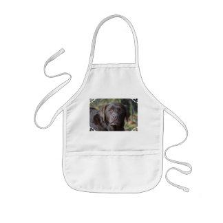 Labrador retriever adorable del chocolate delantal infantil