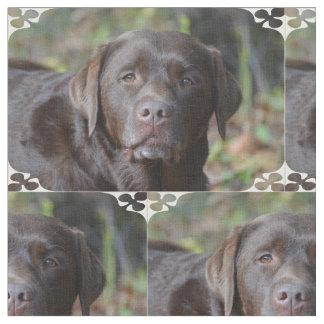 Labrador retriever adorable del chocolate telas