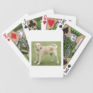 Labrador retriever amarillo baraja de cartas