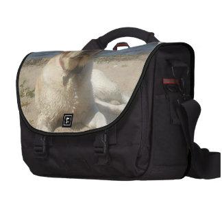 Labrador retriever amarillo bolsas para ordenador
