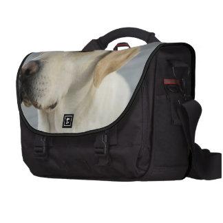 Labrador retriever amarillo bolsas para portatil