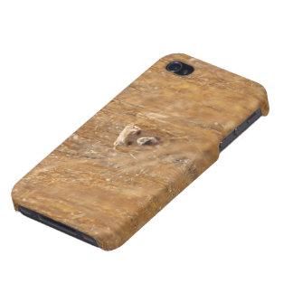 Labrador retriever amarillo camuflado iPhone 4/4S carcasas