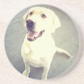 Labrador retriever amarillo cariñoso de la posavasos de arenisca