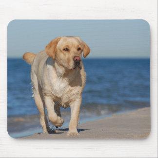 Labrador retriever amarillo en la playa mouse pad