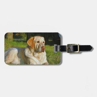 Labrador retriever amarillo etiquetas de equipaje