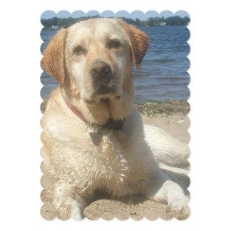 Labrador retriever amarillo invitación 12,7 x 17,8 cm