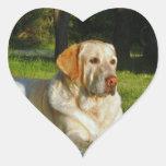 Labrador retriever amarillo pegatina en forma de corazón