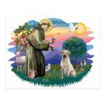 Labrador retriever (amarillo) tarjeta postal