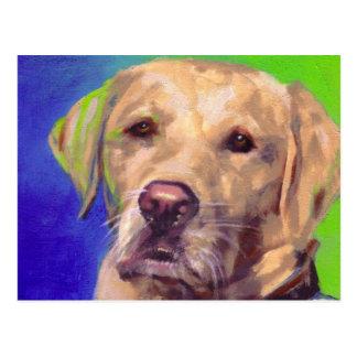 Labrador retriever amarillo postal