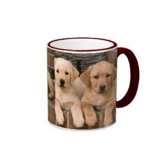 Labrador retriever amarillo taza de dos colores