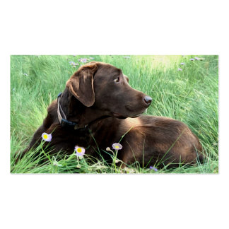 Labrador Retriever And Purple Flowers Double-Sided Standard Business Cards (Pack Of 100)