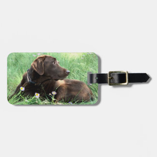 Labrador Retriever And Purple Flowers Luggage Tag