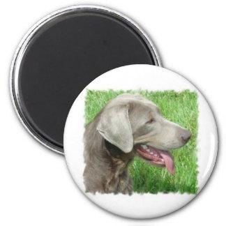 Labrador Retriever Apparel And Items 2 Inch Round Magnet